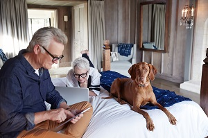 Older couple lounging with dog